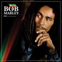 Soul Shakedown Party by Bob Marley.MP3