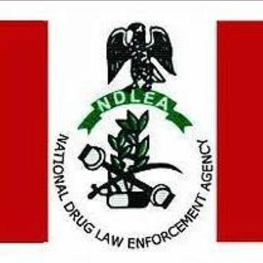 NDLEA past questions.pdf
